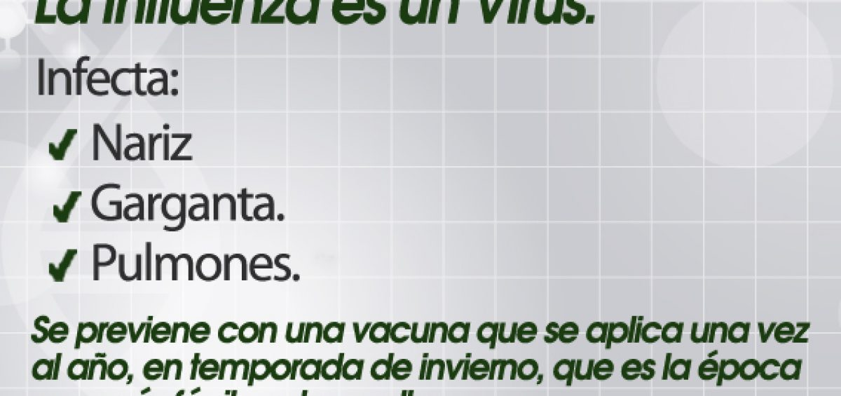 banner virus influeza